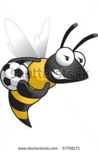 stock-vector-hornet-soccer-57709171